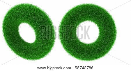 Grassy Torus Object