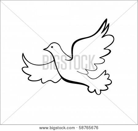 Dove, vector illustration