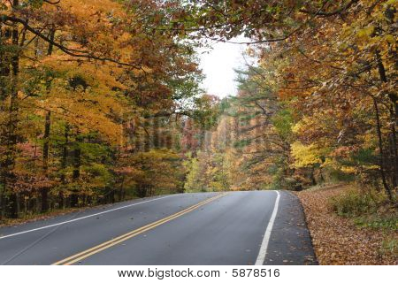 Highway through colorfull foliage