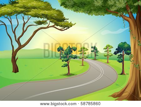 Illustration of a long winding road at the forest