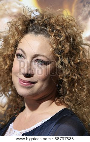 LOS ANGELES - JAN 15: Alex Kingston at the premiere of Paramount Pictures' 'Jack Ryan: Shadow Recruit' at TCL Chinese Theater on January 15, 2014 in Los Angeles, CA