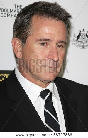 LOS ANGELES - JAN 11:  Anthony LaPaglia at the  2014 G'Day USA Los Angeles Black Tie Gala at JW Marriott Hotel at L.A. LIVE on January 11, 2014 in Los Angeles, CA
