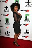 Angela Bassett at the 17th Annual Hollywood Film Awards Arrivals, Beverly Hilton Hotel, Beverly Hill