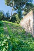 Stairway to the Palatine