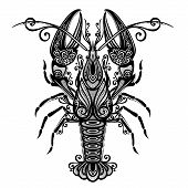 foto of lobster  - Vector Abstract Ornate Sea Lobster - JPG