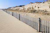 Beach Scenic with Fence Line