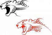 picture of wildcat  - Wildcat sign as a symbol of danger - JPG