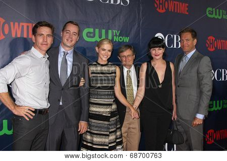LOS ANGELES - JUL 17:  Brian Dietzen, Sean Murray, Emily Wickersham, David McCallum, Pauley Perrette, M Weatherly at the CBS TCA Party at the Pacific Design Center on July 17, 2014 in W Hollywood, CA