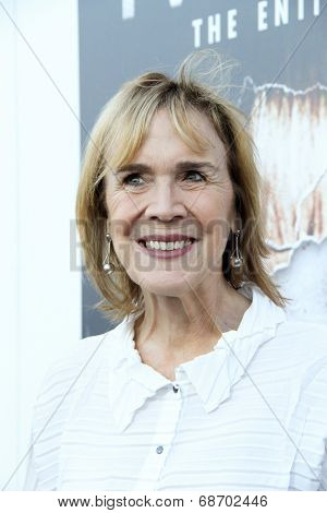 LOS ANGELES - JUL 16:  Catherine E. Coulson at the 'Twin Peaks - The Entire Mystery' Blu-Ray/DVD Release Party And Screening at the Vista Theater on July 16, 2014 in Los Angeles, CA