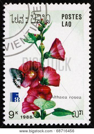 Postage Stamp Laos 1988 Hollyhock, Ornamental Plant