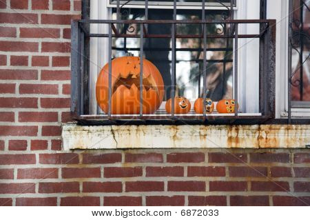 Pumpkins Behind Bars