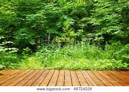 Wooden floor in a green forest. Concepts of spa, relax, wellness, nature etc.