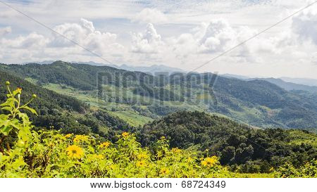 Landscape High Mountain Range At Doi Mae U Ko