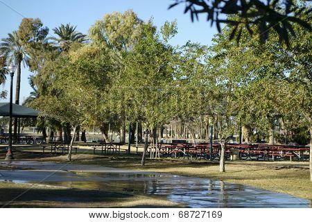 Meeting Area In Encanto Park