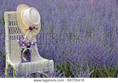 chair with hat in flower field