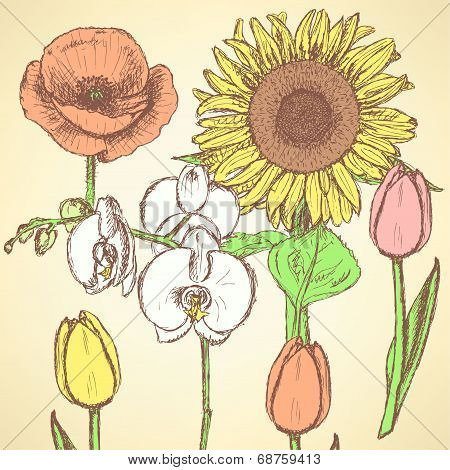 Sketch Flowers, Vector Vintage Backgrounds