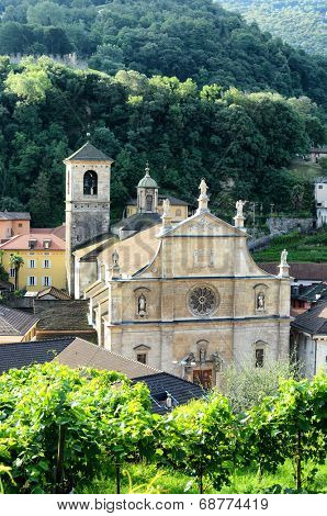 BELLINZONA, SWITZERLAND - JULY 4, 2014: The Collegiate Church and vineyard, seen from Castelgrande. The Renaissance building was built in 1517 by Tomaso Rodari, builder of Como Cathedral.