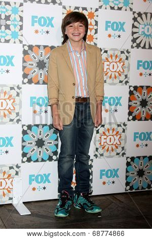 LOS ANGELES - JUL 20:  Ben Hyland at the FOX TCA July 2014 Party at the Soho House on July 20, 2014 in West Hollywood, CA