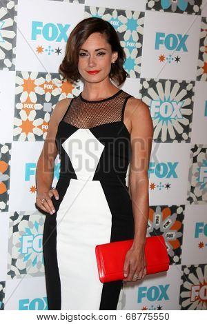 LOS ANGELES - JUL 20:  Natalie Brown at the FOX TCA July 2014 Party at the Soho House on July 20, 2014 in West Hollywood, CA