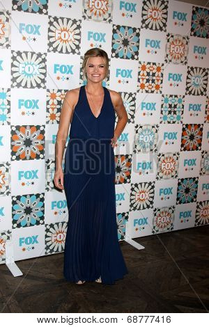 LOS ANGELES - JUL 20:  Missi Pyle at the FOX TCA July 2014 Party at the Soho House on July 20, 2014 in West Hollywood, CA