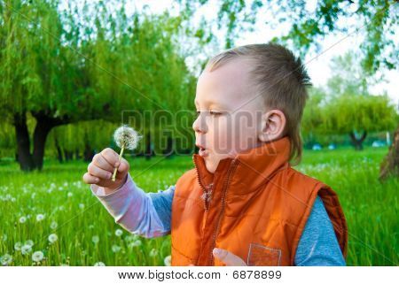 The Boy With A Dandelion