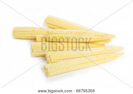 Baby Corn Isolated On White Background.
