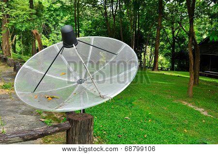 Satellite Dish In The Garden