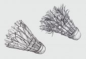 picture of shuttlecock  - Old and new shuttlecock in sketch style - JPG