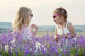 pic of lavender field  - Two funny little girls play in a lavender field - JPG