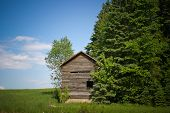 pic of shacks  - A rustic tiny shack on top a the green grass hill partially hidden by tall green trees with a nice daylight clear blue sky in summer - JPG