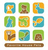 image of gerbil  - House Pet Icons - JPG
