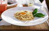 stock photo of carbonara  - Delicious Italian pasta carbonara on a white plate - JPG