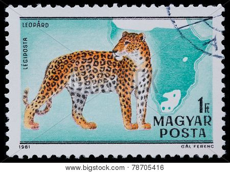 Stamp Series Wild Animals