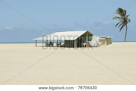 Tropical Restaurant Shack