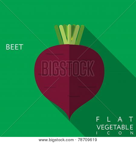 Beet Flat Icon Illustration With Long Shadow