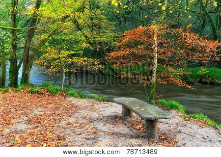 Wooden Bench By River