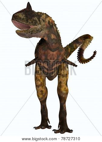 Carnotaurus Front Profile