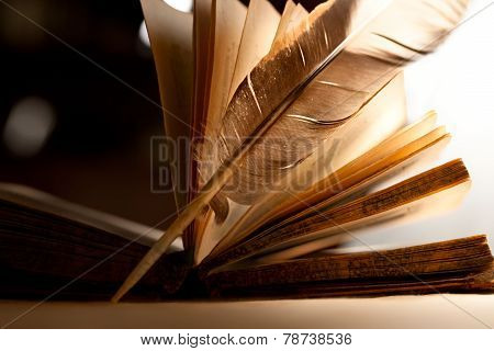 Feather And Old Open Book