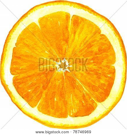 slice of orange drawing by watercolor