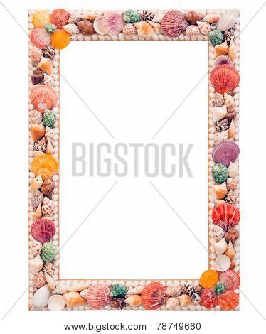 The Photo Frame With Seashells Isolated On White Background