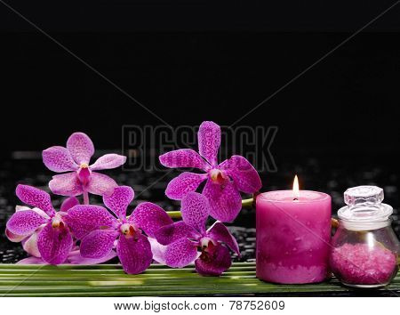 Branch orchid with pebbles and long leaf on wet background