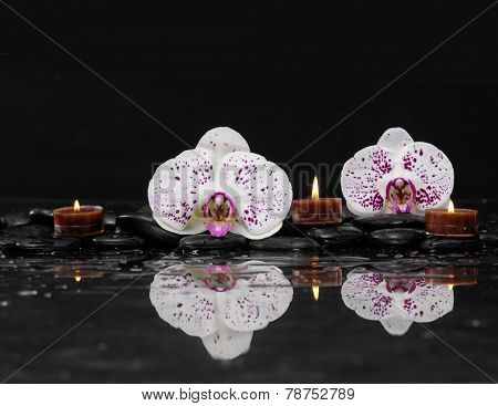 Beautiful white orchid with three candle and therapy stones