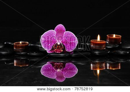 Beautiful pink orchid with three candle and therapy stones