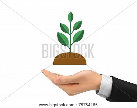 Realistic Hand Holding Plant Isolated On White
