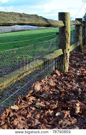 Rabbit netting on wood fence.