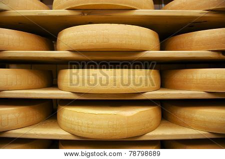 Gruyere cheese matures at the wooden shelfs, Gruyeres, Switzerland.