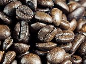 stock photo of spit-roast  - Macro view of roasted whole coffee beans - JPG