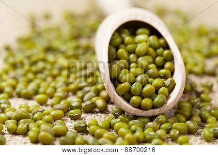 Natural healthy mung bean vegetarian legume grain in wooden spoon