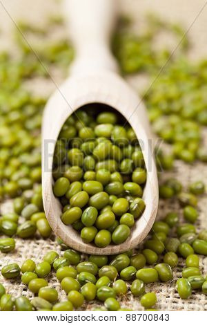 Green vegetarian nutrition raw mung beans in wooden spoon