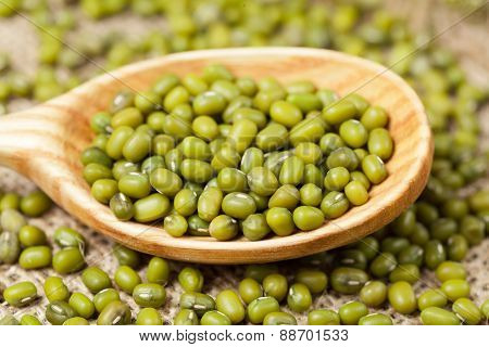 Green healthy uncooked mung beans full of protein super foods
